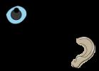 Seen+Heard(Logo)